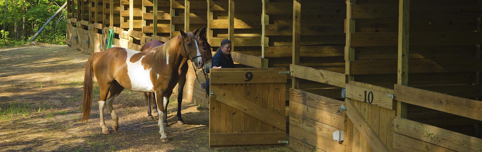 Horseback Riding at A.H. Stephens