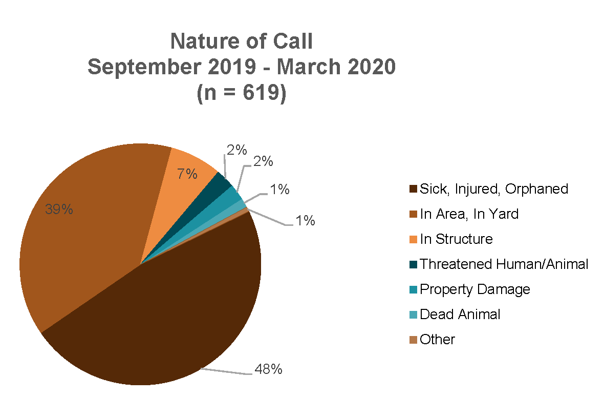 Nature of Call Chart