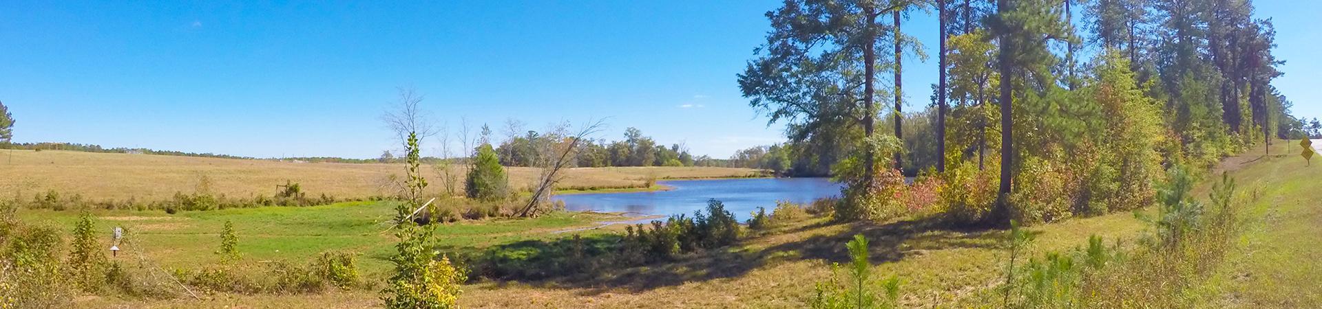 pond at B.F. Grant Wildlife Management Area