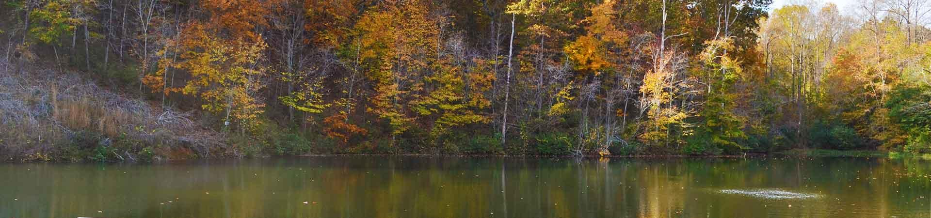 lake and trees at Buck Shoals Wildlife Management Area