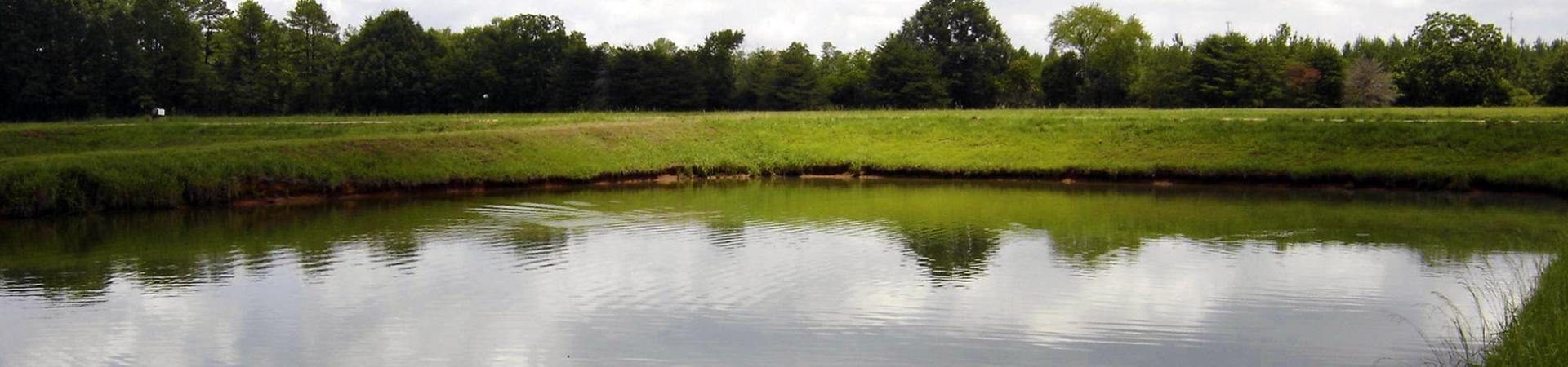Dawson Fishing Pond
