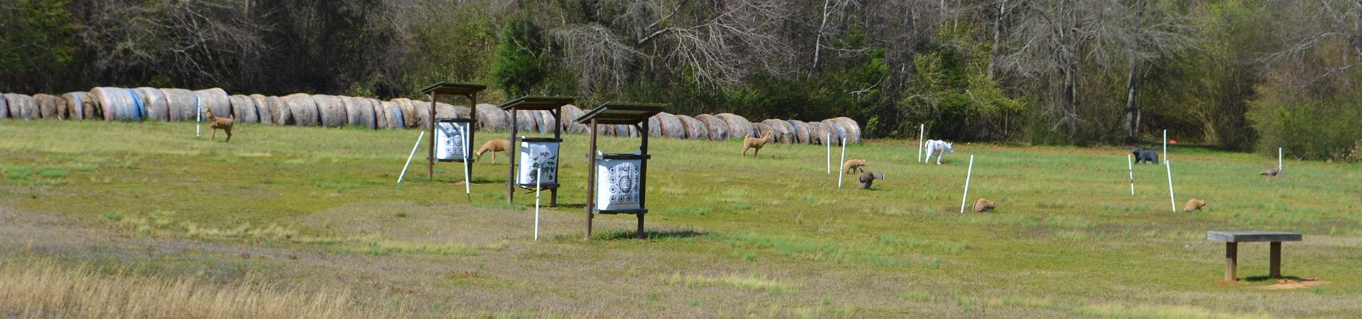 targets at archery range
