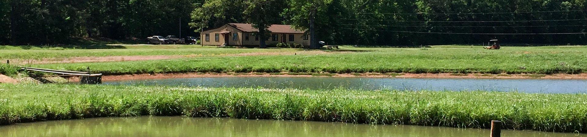 Hatchery Stock Pond