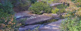 creek at Cedar Creek Wildlife Management Area