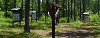 Bullard Creek Archery Range
