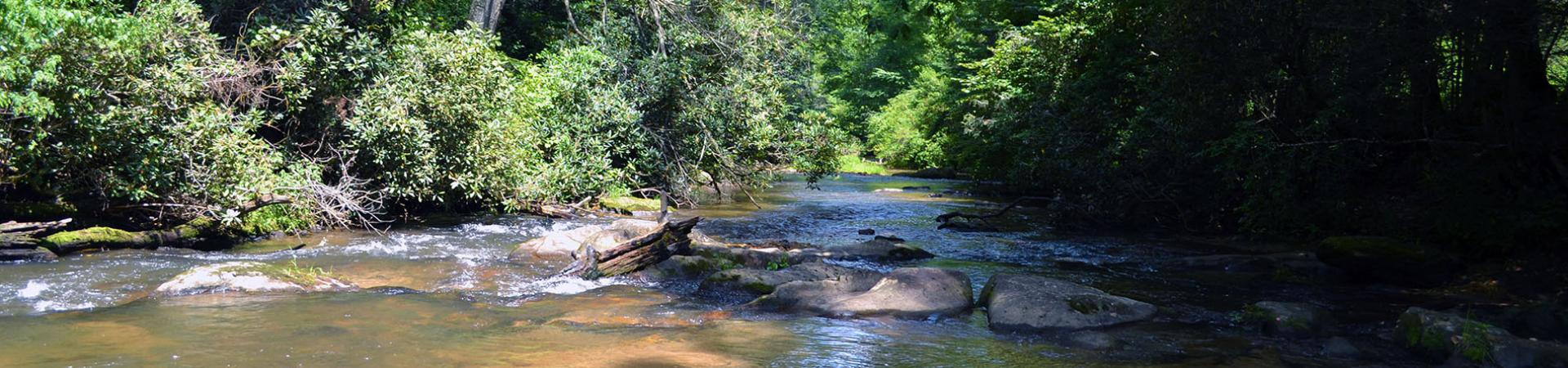 Blue Ridge River