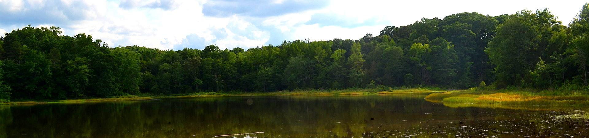 Elbert County WMA Pond