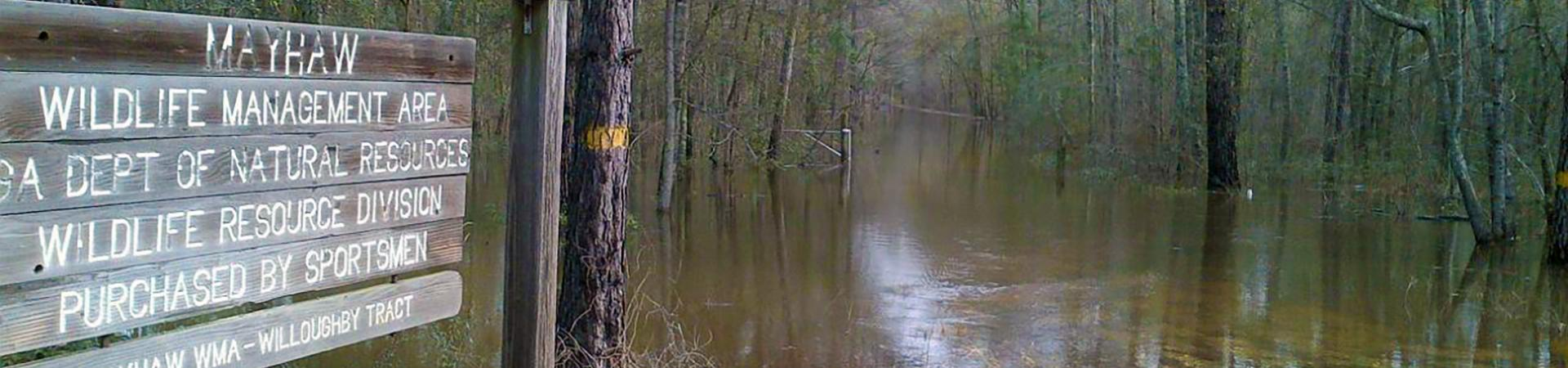 Mayhaw Sign by Water