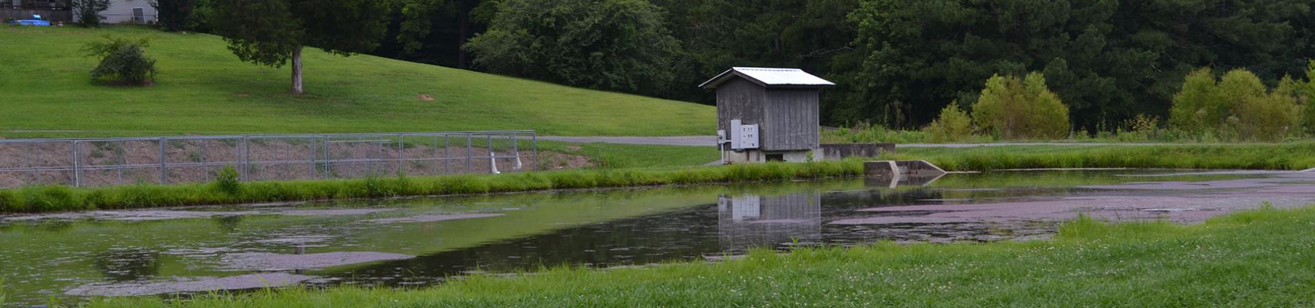 Summerville Hatchery Pond