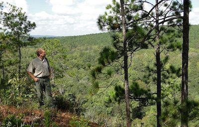 Nathan Klaus in Longleaf Heath Bluff, Photo by Rick Lavender
