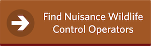 Find Nuisance Wildlife Control Operators