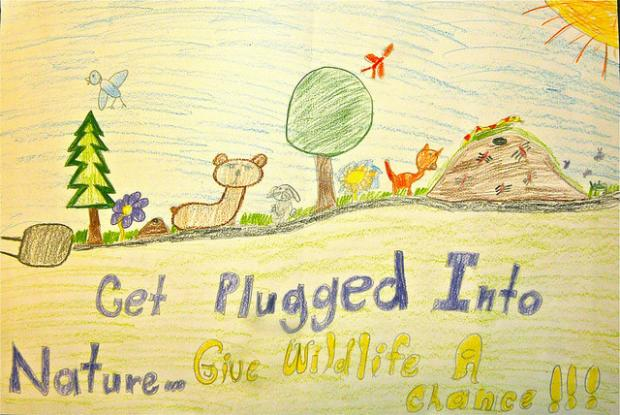 Get Plugged Into Nature poster from poster contest