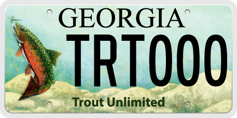 Trout License Plate
