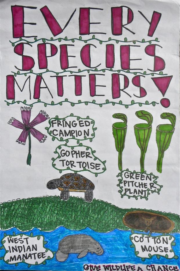 Every Species Matters poster with wildlife. Cute. Drawn by child.