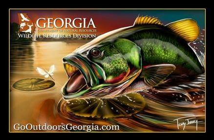 Licenses permits passes and boat registration wildlife for Georgia non resident fishing license