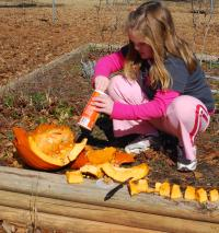 Terry's granddaughter prepares some pumpkin treats for wildlife.