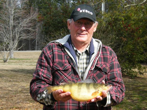Thomas Lewis' GA State Record Yellow Perch