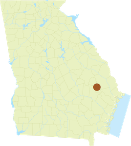 Map of Evans County